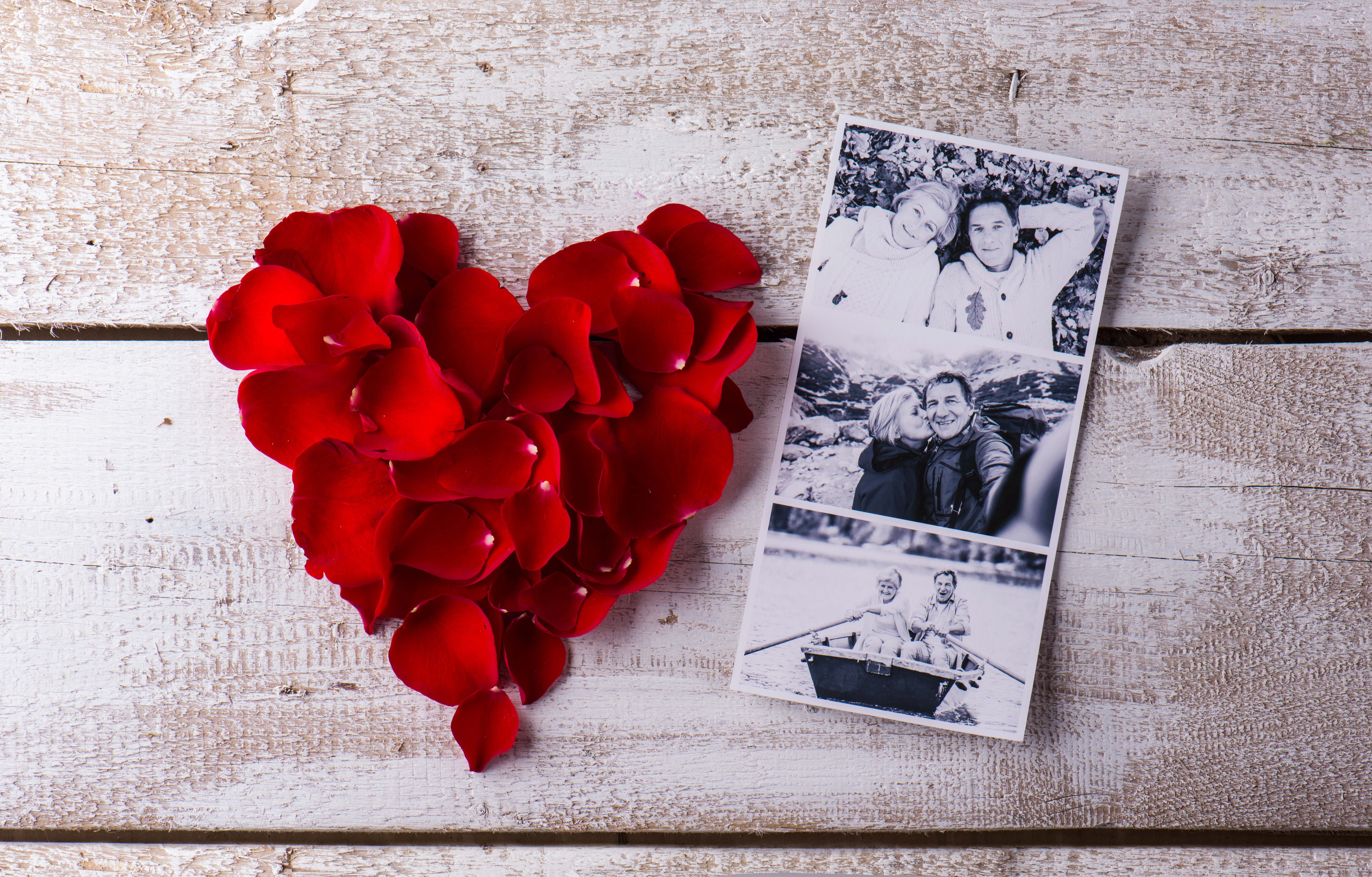 graphicstock-black-and-white-photos-of-a-romantic-senior-couple-laid-on-white-wooden-table-red-rose-petal-heart-valentines-day-composition_HuvCG4Sz-